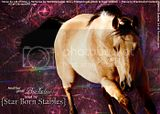 Star Born Stables texture